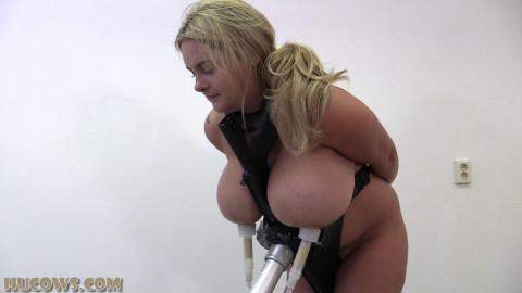 Welcome Domination & Breast Training Machine For New Slave With Huge Tits