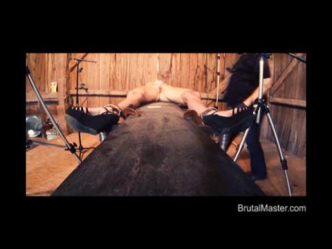 BM Pig - Sewed Cunt Torture