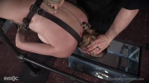 Ashley Lane Tanked: Part 2