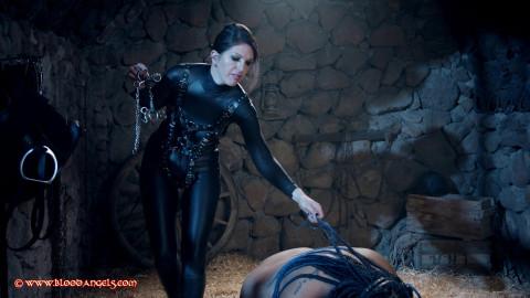 Black Beauty - Part - Venus Black & Estigia