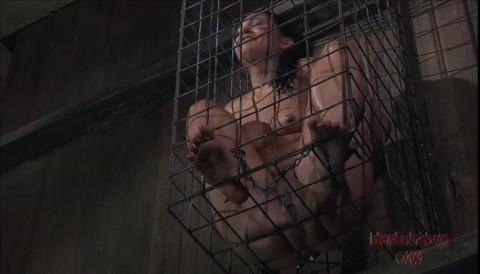 Captive Cunt Jade Indica
