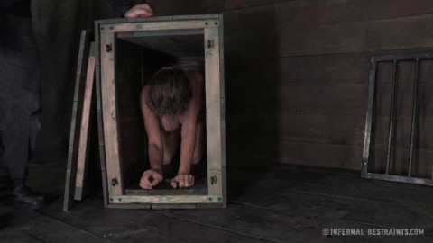 Felony in the scene Babys Box – May 17, 2013