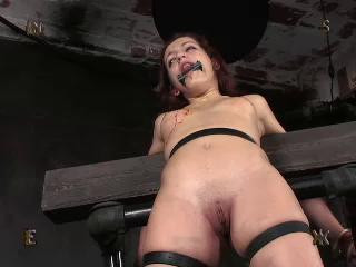 Slave  is the ultimate masochist