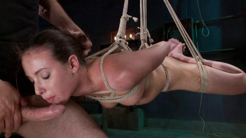 Submissive Desires(Casey Calvert, Maestro)