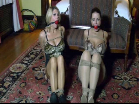 Busty ladies tied up, gagged & struggling part 3