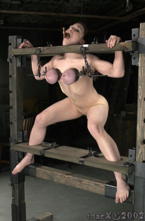 Insex - Pigletss Training - 1203s Training