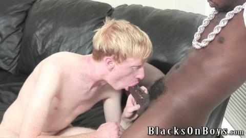 White homosexuals Like BBC vol. 2