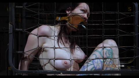 Bondage, soreness and domination for sexy concupiscent slut part 2 Full HD 1080p