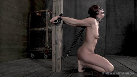 Best HD Bdsm Sex Videos Shocking The Slut