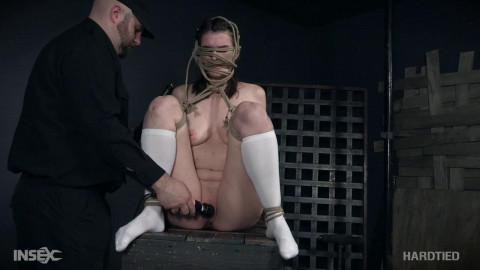 Bondage Torture For Sex Dolls