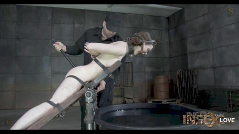 Hazel Hypnotic - Transporter