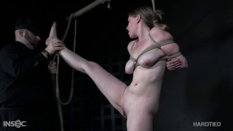 Bdsm HD Porn Videos The Cause