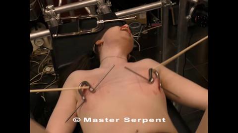 Master Serpent in torment galaxy part 20