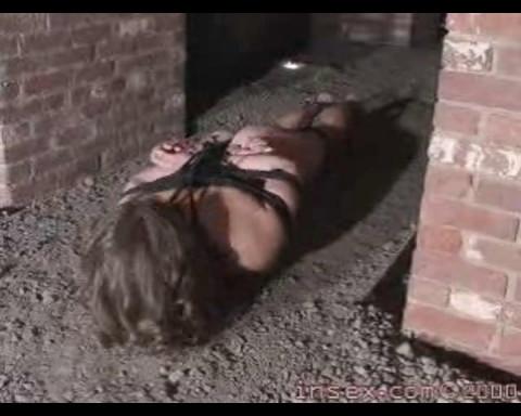 Insex - The Fort (Violet, Shonta)