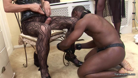Shemale Mistress with another shemale and black sub guy