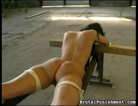 Brutal Punishment bdsm video 16