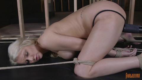 Doggy Style Bondage Orgasms
