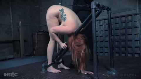 Hardcore Domination For Busty Whore Lauren Phillips