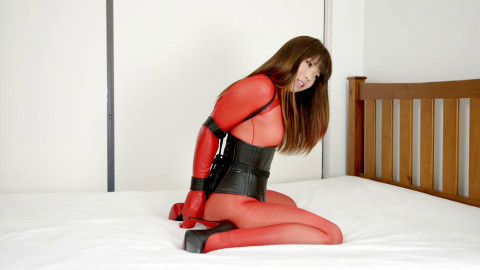 Restricted Senses - Red Sheer Bodystocking