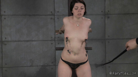 Harley Ace - Tied Up