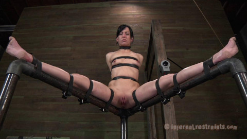 Elise Graves Queen Of Pain Part One