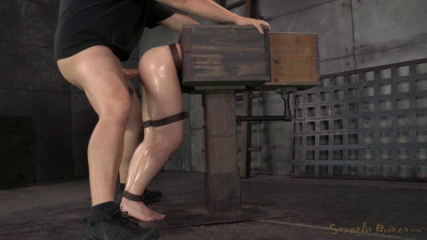 Fresh faced Amy Faye bound in a wooden box