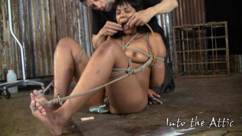 Marle Electric torture