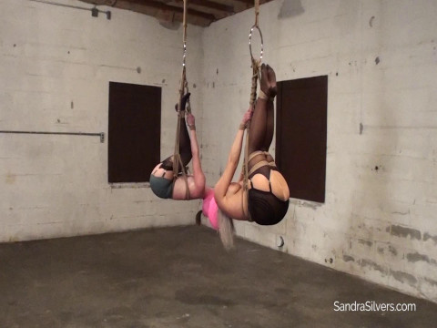 A Duo of Ass-Exposed Suspended Damsels Vet-Wrap Hooded on Screen