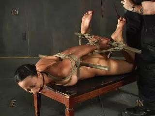 Tests 15 - InSex