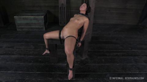 Mia Gold - The Sweat Box - BDSM, Humiliation, Torture