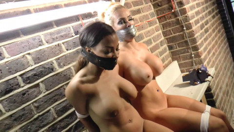 Massive Tits Got Snatched Naked by Psychotic Villains - Chessie & Ruby