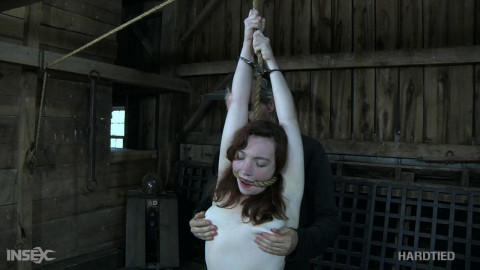 Living Bondage Fantasy  - Maggie Mead
