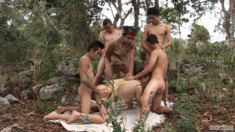 Vimpex Gay Media – Jungle make (2010)