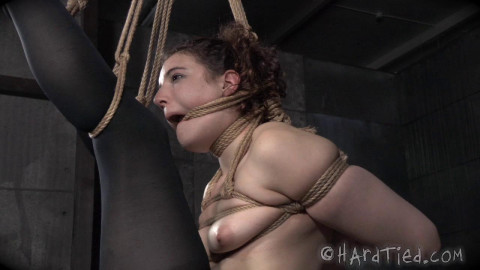 Hardtied - May 06, 2015 - Lost in Rope - Endza Adair - Jack Hammer