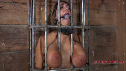 Caged Pig | Trina Michaels, PD