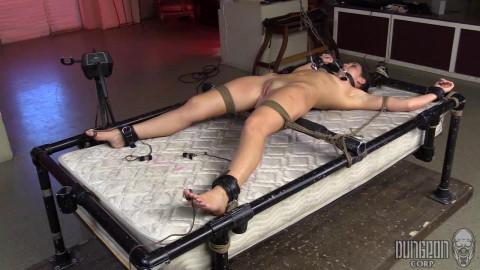 The Sexual Submissive Next Door part 3