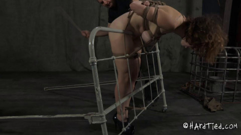 Hardtied Extreme Rope Bondage video 72