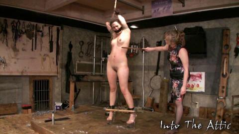 ZaydaJ Torture