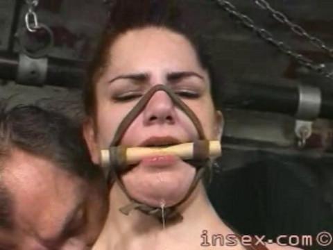Insex - Yxs Training