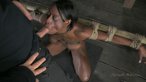 Bound, oiled, hung upside down, throat fucked, made to cum!