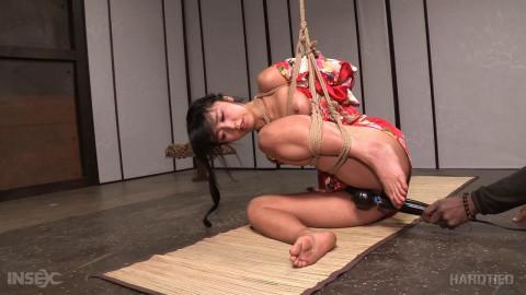Return to Shibari , Marica Hase , Jack Hammer