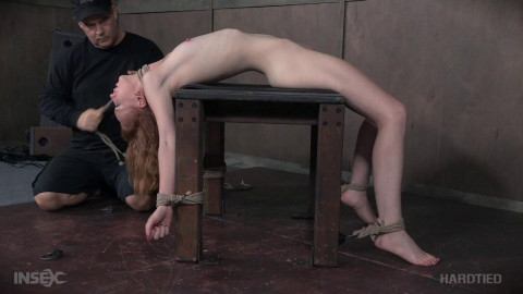 Arched - Katy Kiss