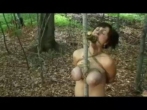 Insex - Sticks N Stones