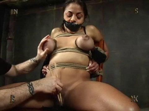Insex - Tests 15