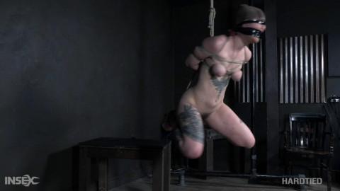 Bondage & Humiliation For Nasty Ava DAmore