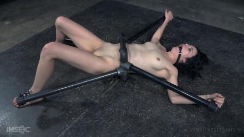 Rita Rollins Waisted Slut (2016)