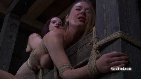 Star, Claire Adams - Caught in the Web Part Two