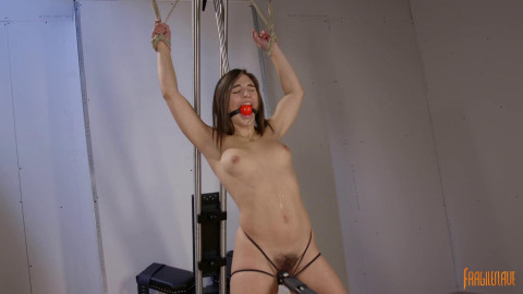 Tied Spread and Cumming Abella Danger (2017)