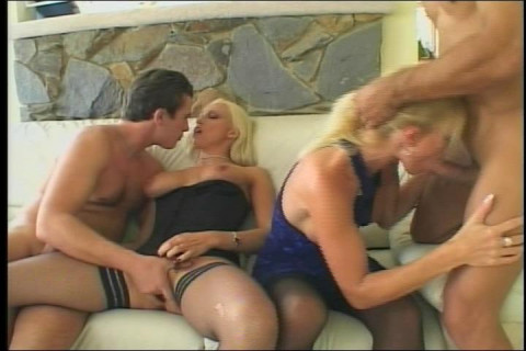 Sexy twins in a foursome