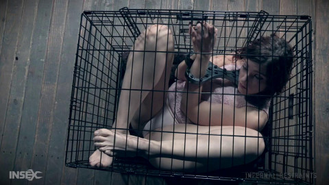 Six months in a cage
